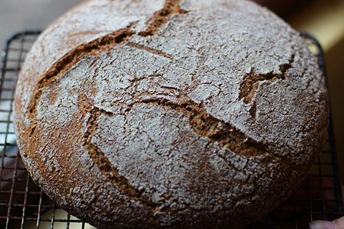 Bread Crust Web